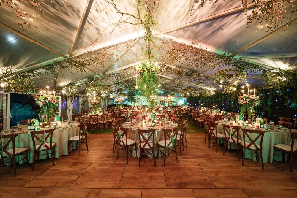 tables ready for dining in a marquee - cross-back chairs and lavish foliage